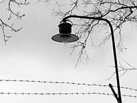 Заключенные саратовской колонии порезали себя в ответ на применение дубинок