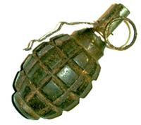 В Тольятти на территории школы нашли гранату Ф-1