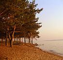 Мэрия Тольятти информирует о незаконности строительства домов в прибрежной зоне
