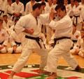 В Тольятти проходит семинар по дзю-дзюцу и айкидо