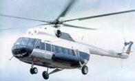 К саммиту Россия-ЕС построят вертодром