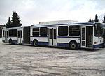 В автобусном парке Тольятти пополнение