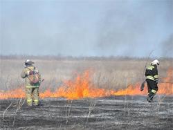 Фото с сайта http://www.tltnews.ru