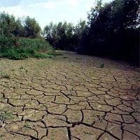 География почв и ее неотъемлемая